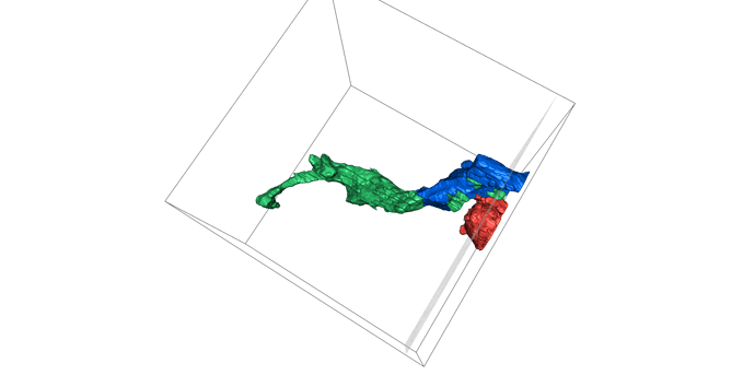 Eyewire-3D-fayili-2021-09-01T11 20 37Z